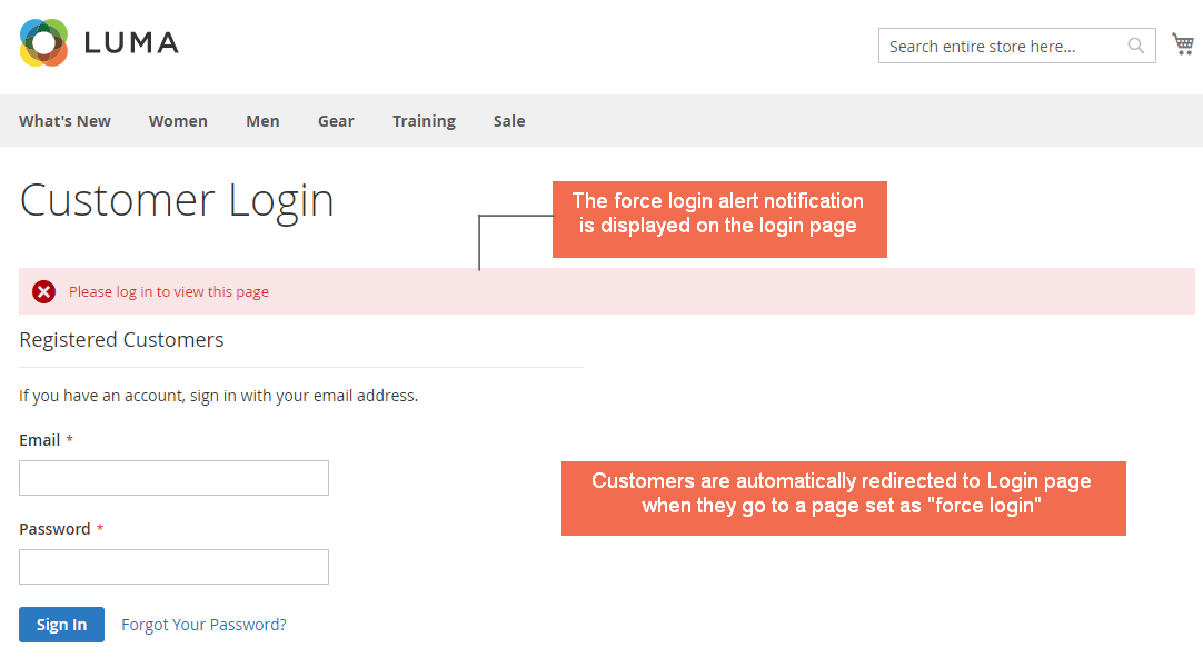 magento-2-force-login-extension