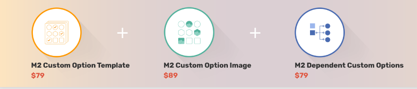 why-need-magento2-custorm-option