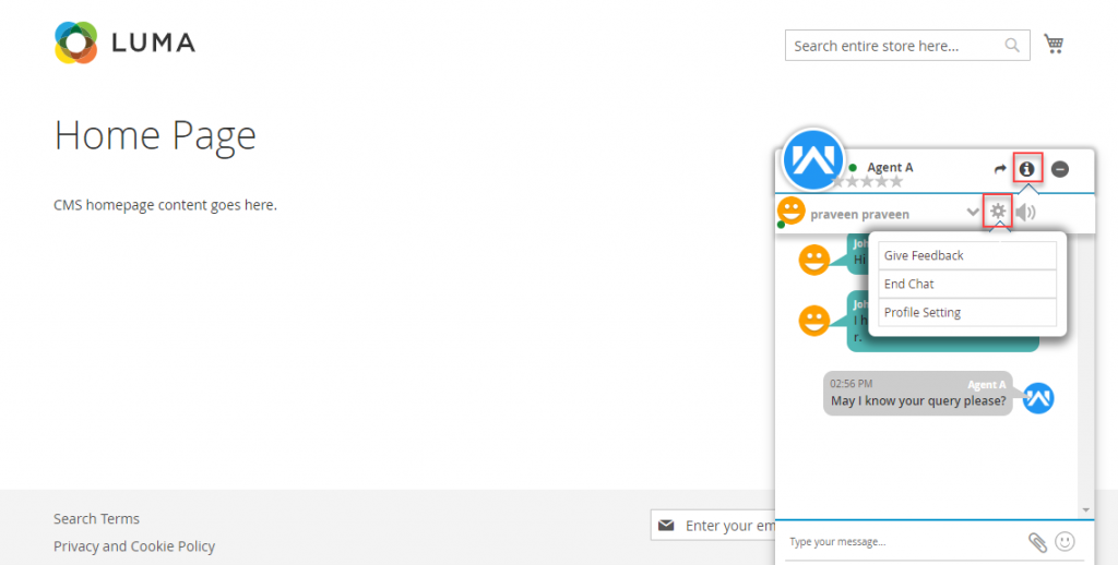 chat-system-magento-webkul