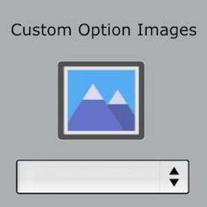 Magento-2-Custom-Option-Image